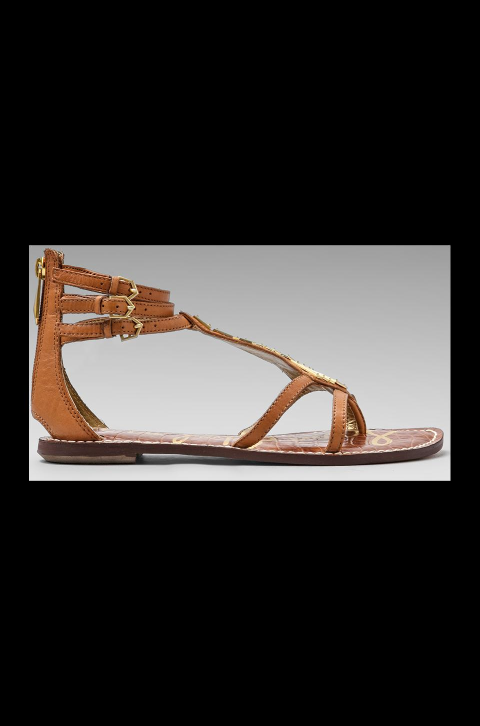 Sam Edelman Genna Sandal in Saddle