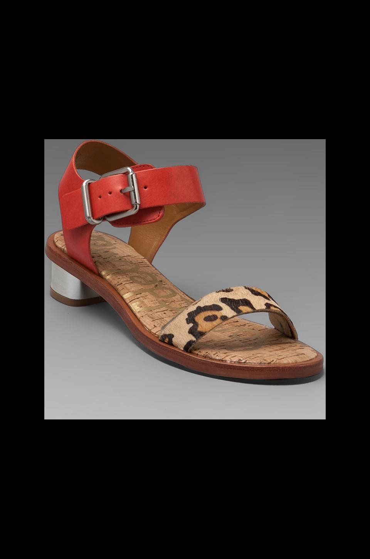 Sam Edelman Trina Sandal in New Nude Leopard/ Mandarin