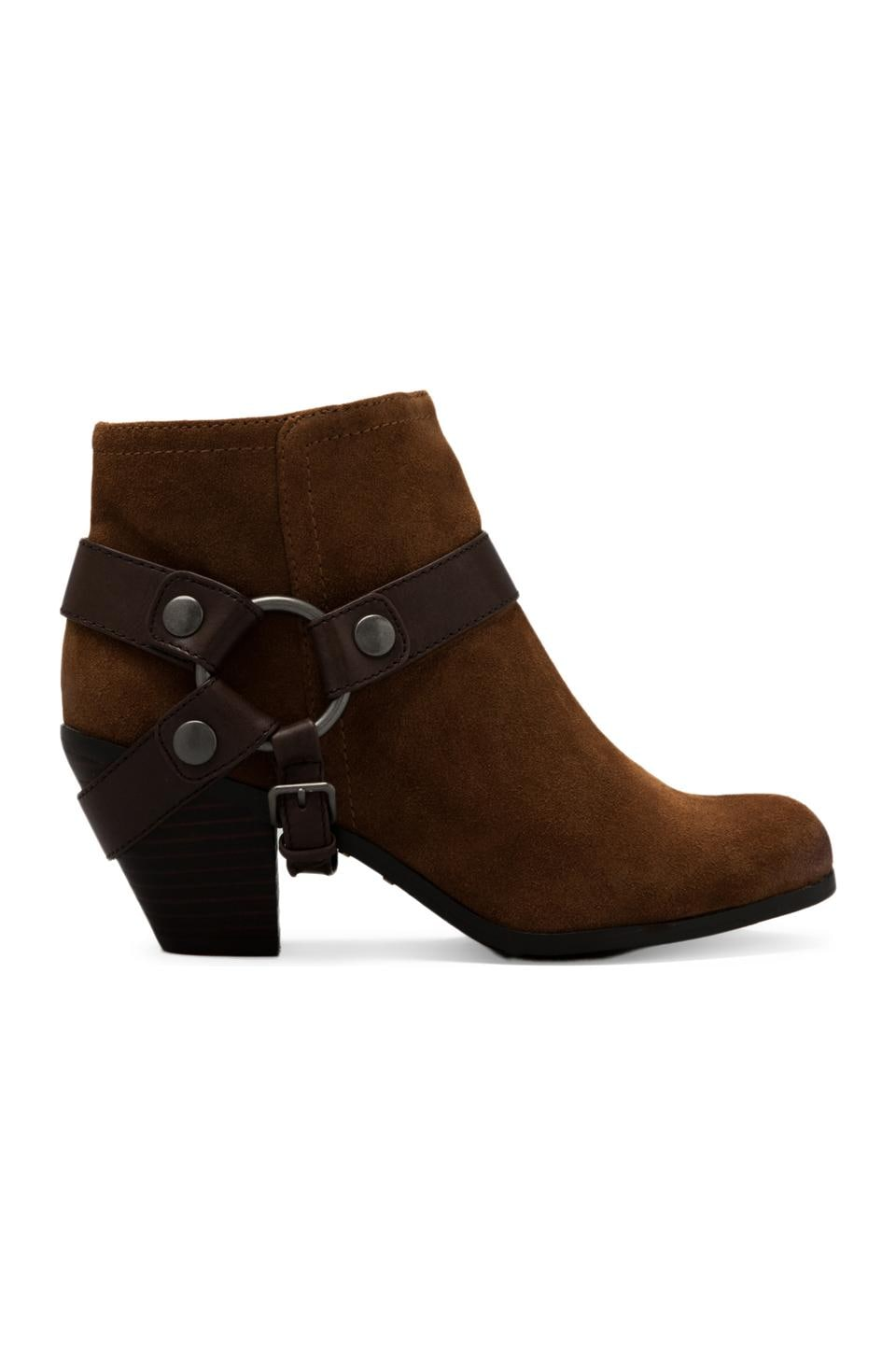 Sam Edelman Landon Boot in Whiskey/Espresso Bean