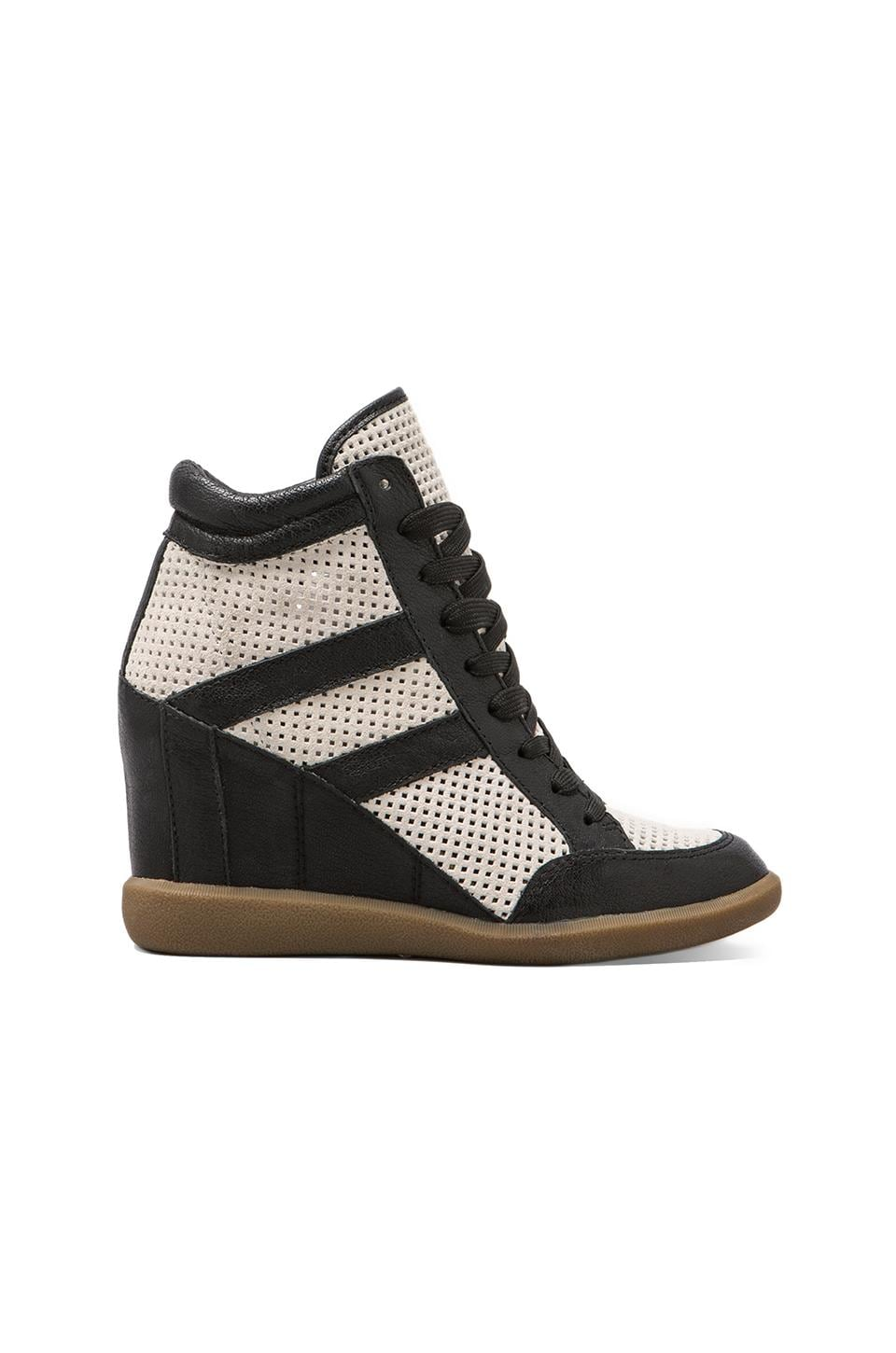 Sam Edelman Bolton Sneaker in Snow White/Black