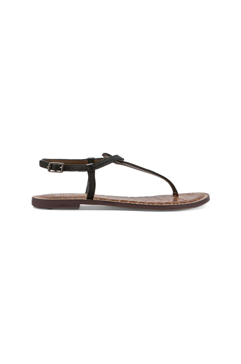 Sam Edelman Gigi Sandal in Black