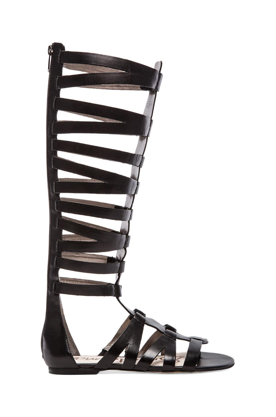 Sam Edelman Bryant Gladiator Sandal in Black
