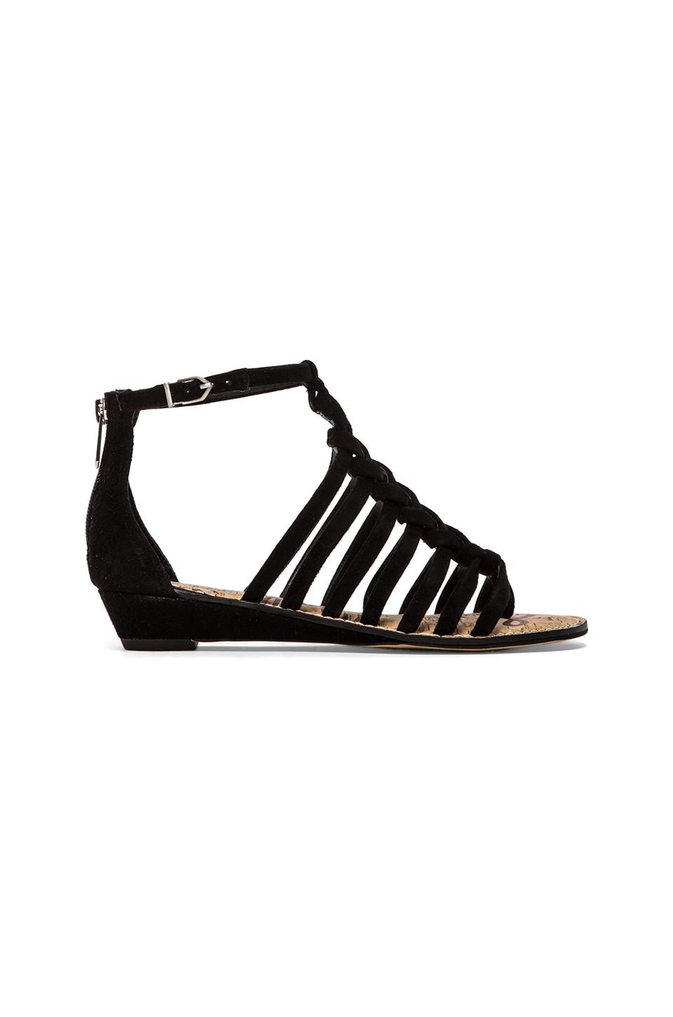 Sam Edelman Dakota Sandal in Black