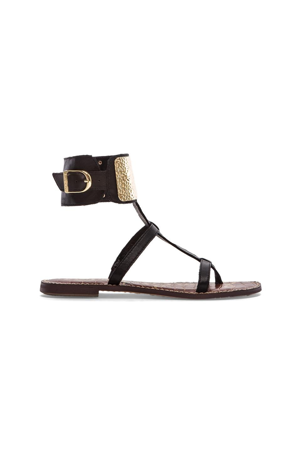 Sam Edelman Genette Sandal in Black