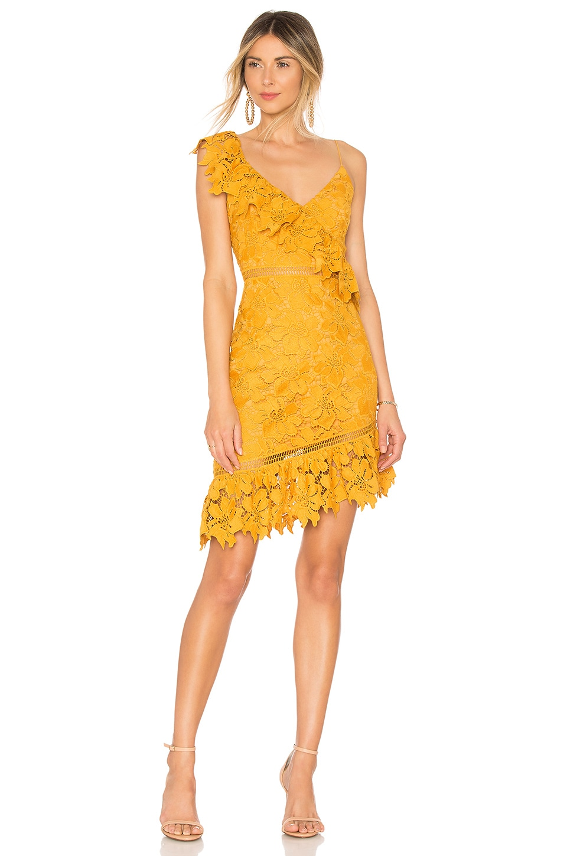SAYLOR SOPHIA DRESS