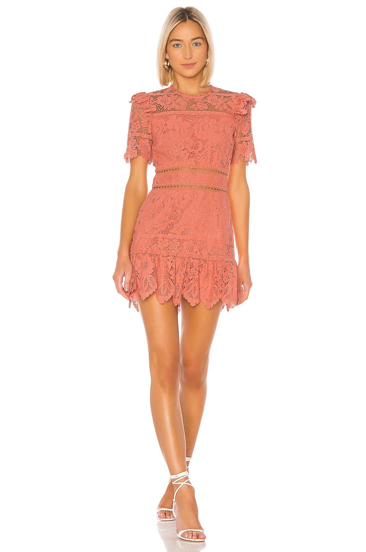 SAYLOR Sigourney Dress in Burnt Coral