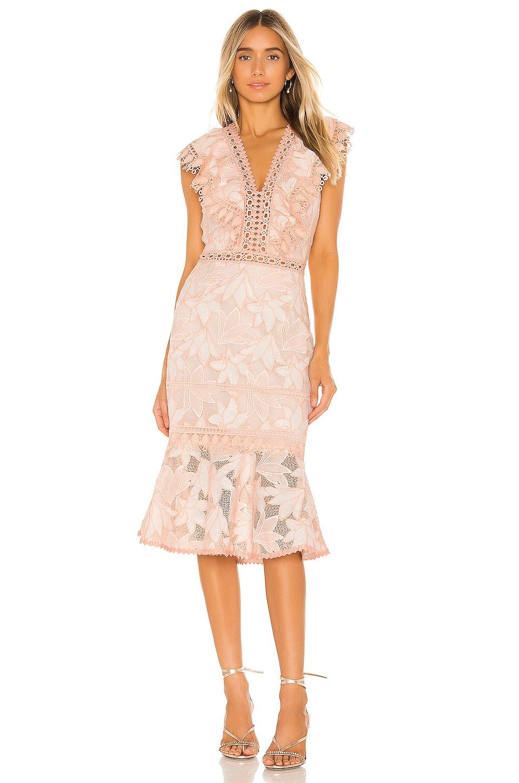 SAYLOR Brynn Dress in Blush