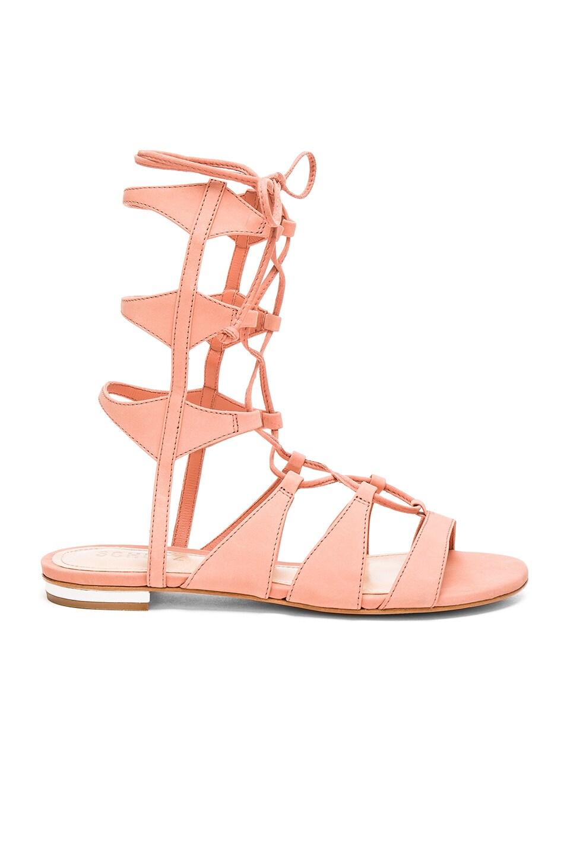 Schutz Erlina Sandal in Clay