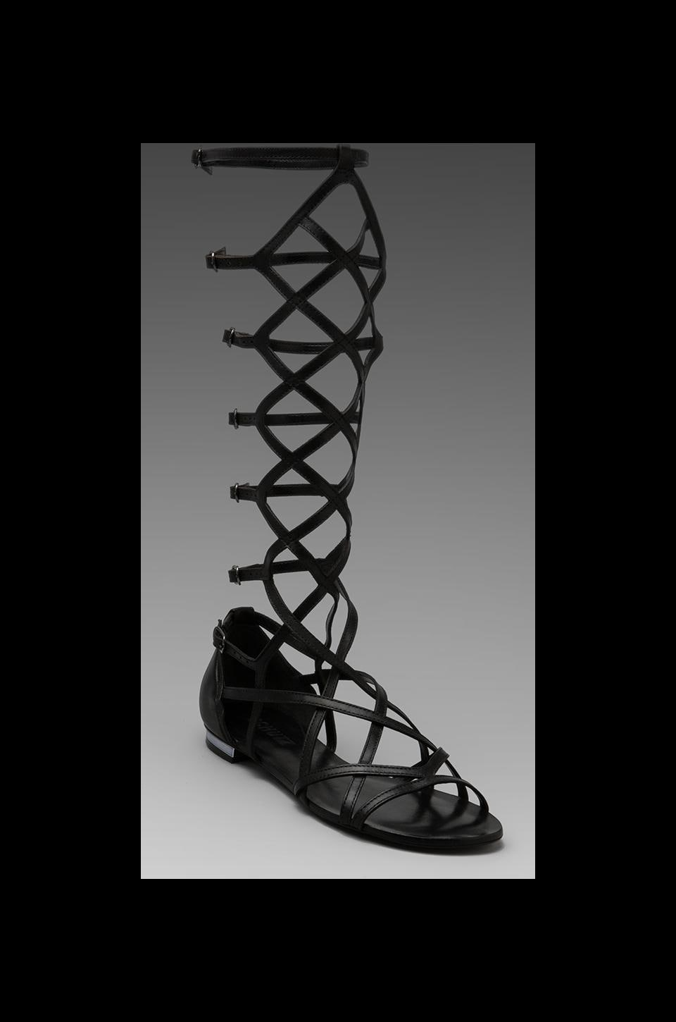 Schutz Charlotte Anne Gladiator Sandal in Black