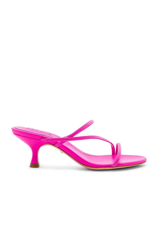 Evenise Sandal