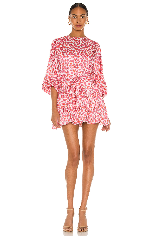 SELMACILEK Printed Mini Dress in Pink Floral