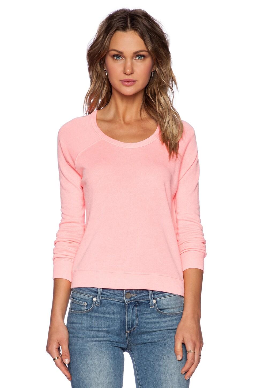 SUNDRY Cropped Pullover Sweatshirt in Neon Heat
