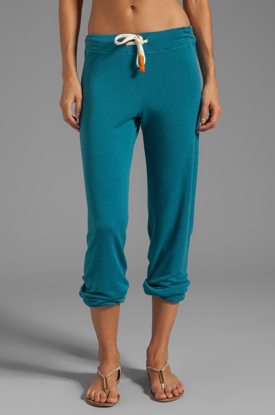 SUNDRY Classic Sweatpants in Peacock