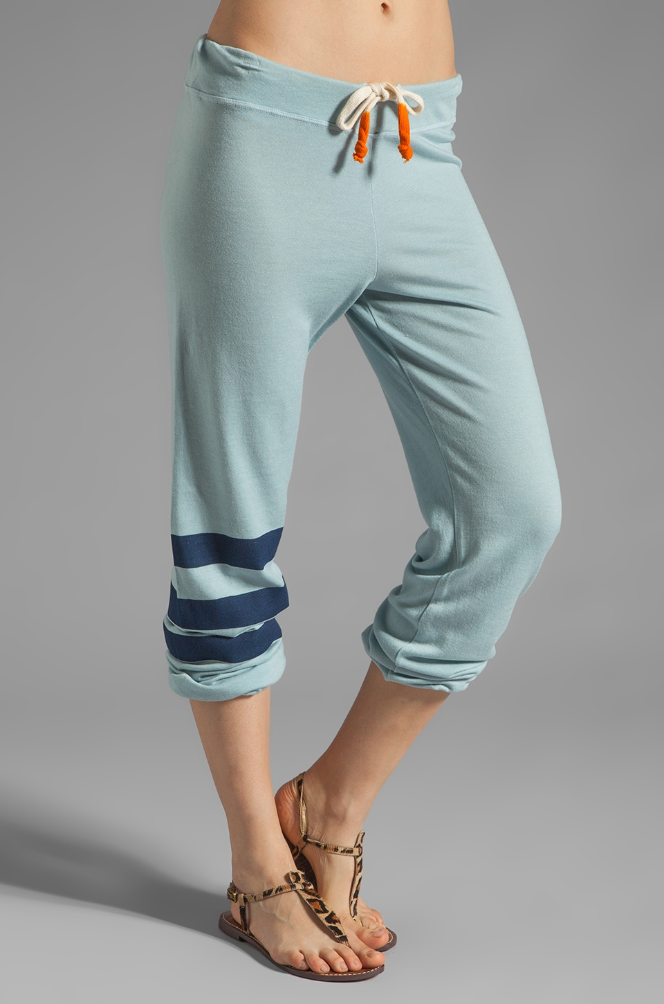 SUNDRY Stripes Classic Sweatpant in Dusty Blue