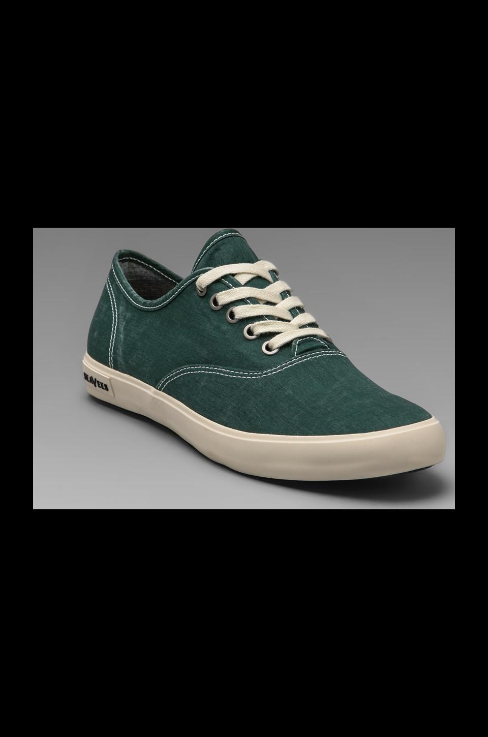 SeaVees Circular Vamp Oxford in Ceramic Green