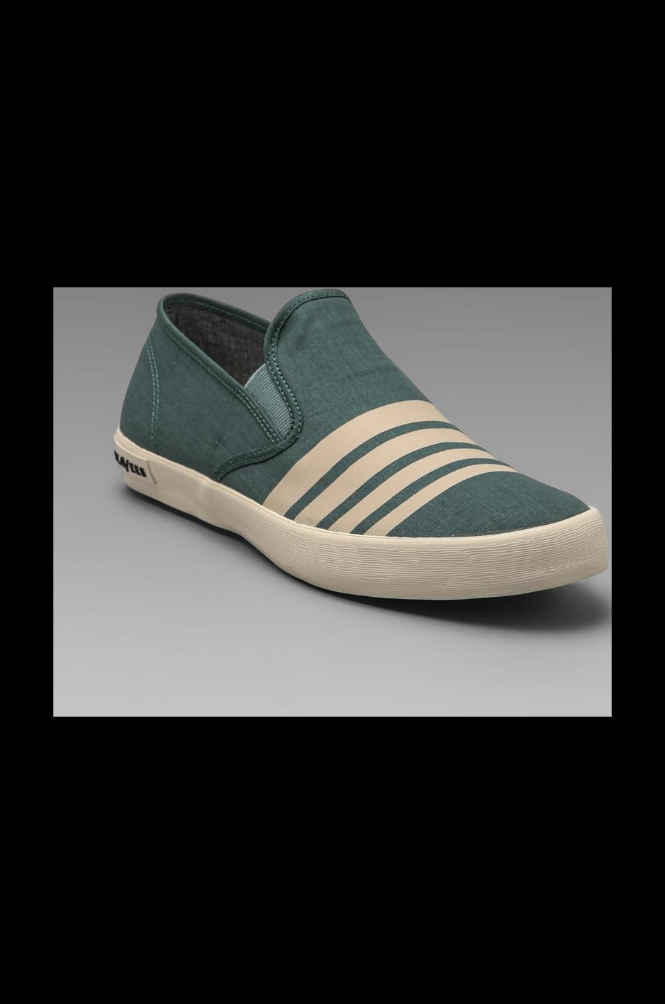SeaVees Baja Slip-on Board Stripe in Seagrass
