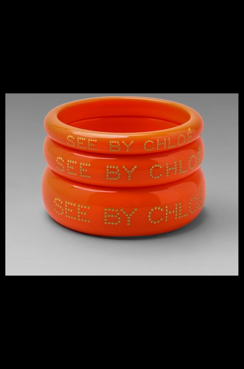 See By Chloe Bangles in Calypso