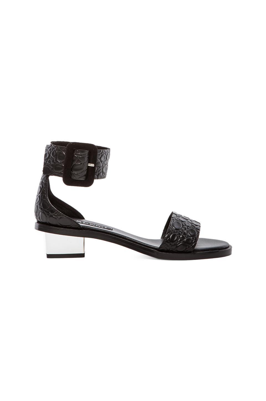 SENSO Jolie I Sandal in Black & Black