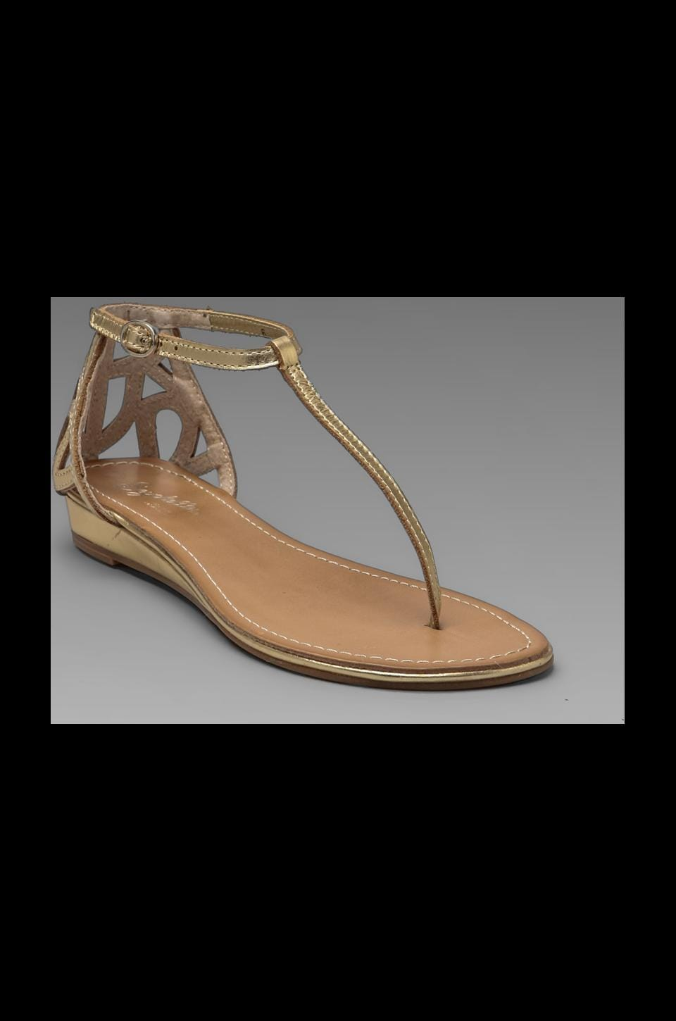 Seychelles Fearless Sandal in Gold