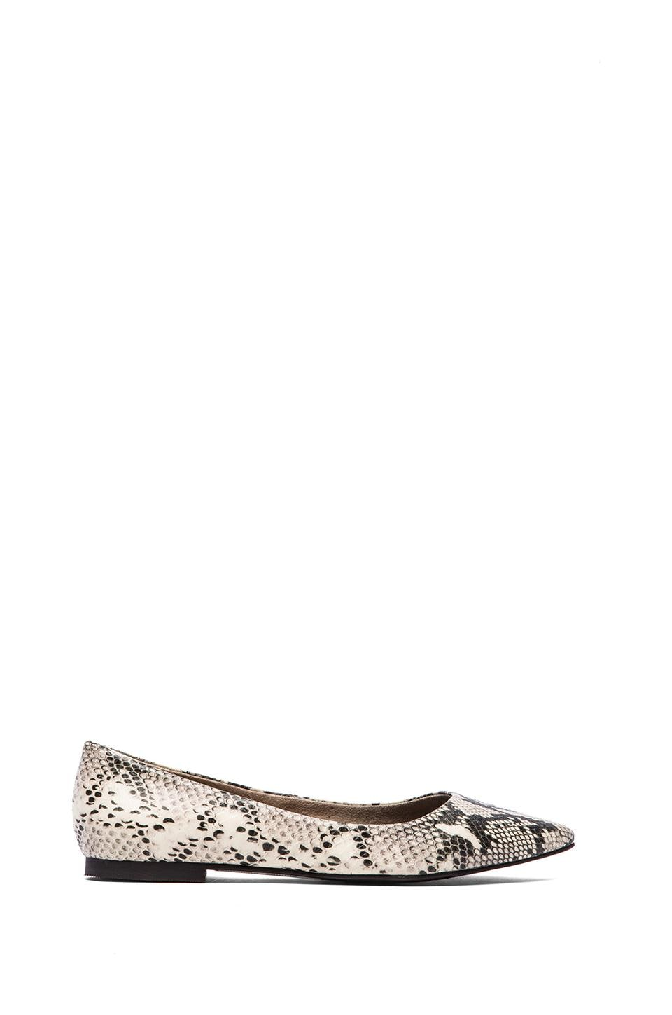 Seychelles Well Known Flat in Black & White Python