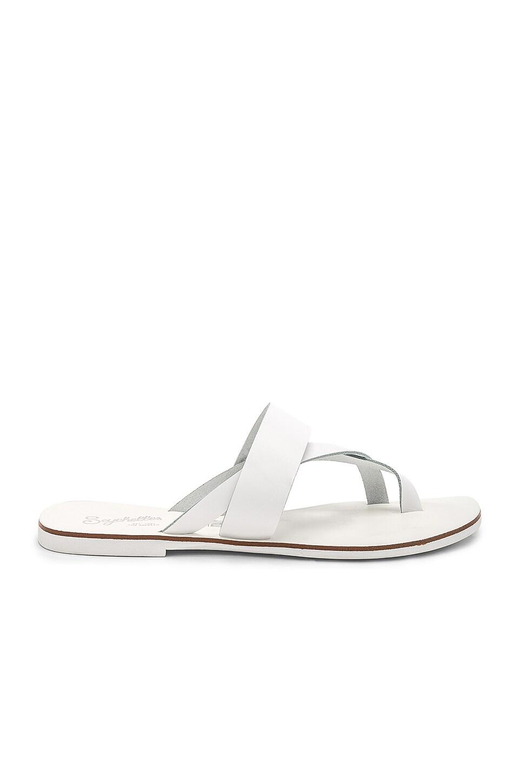 Destiny Sandals