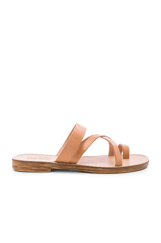 Seychelles So Precious Sandal in Vacchetta