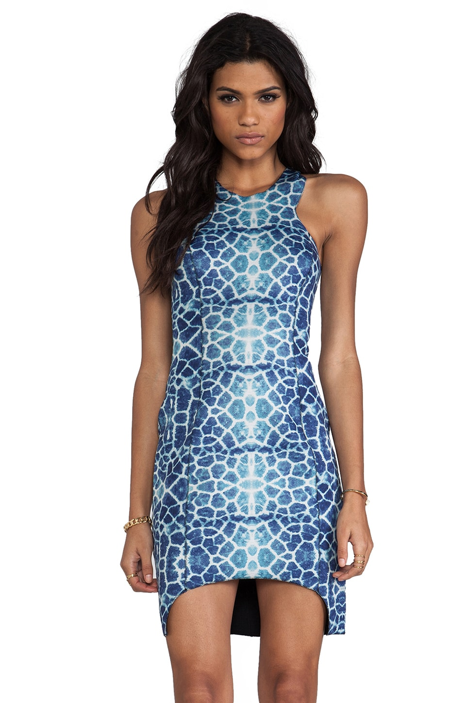 Shakuhachi Giraffe Racer Neck Dress in Giraffe Print