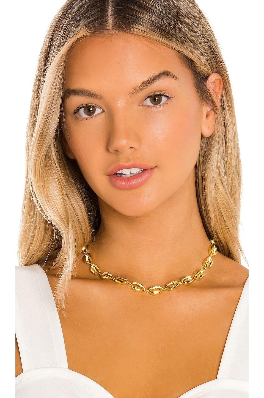 SHASHI Caroline Choker in Gold