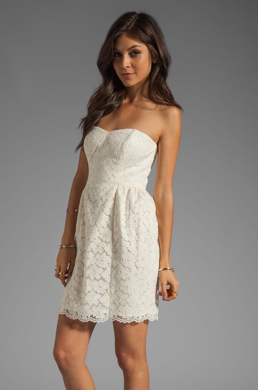 Shoshanna Nicolette Dress in Ivory
