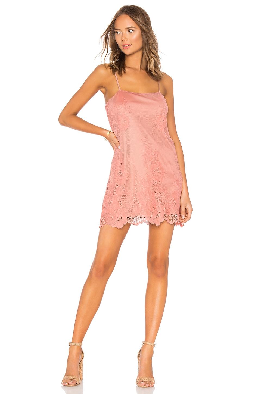 Show Me Your Mumu Super Slip Dress in Garden Party Lace Terra Cotta