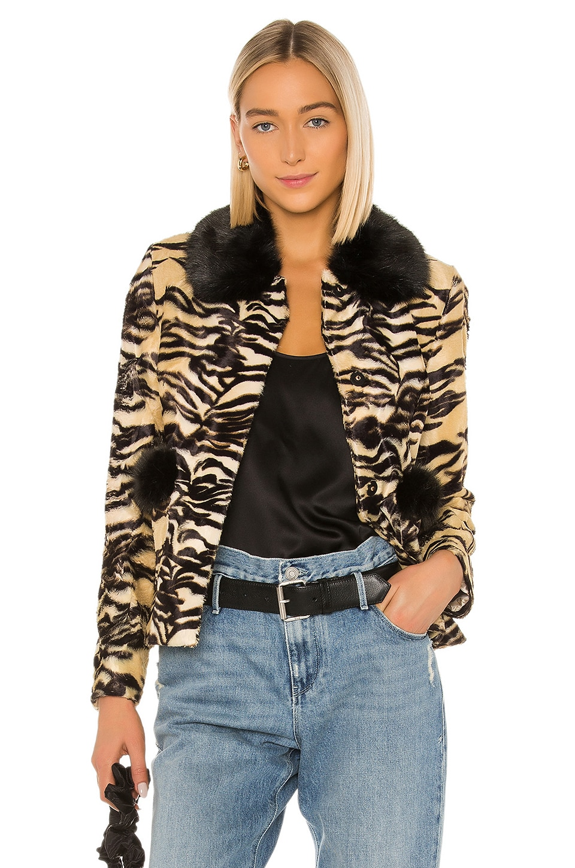 Shrimps Duke Coat in Tiger & Black