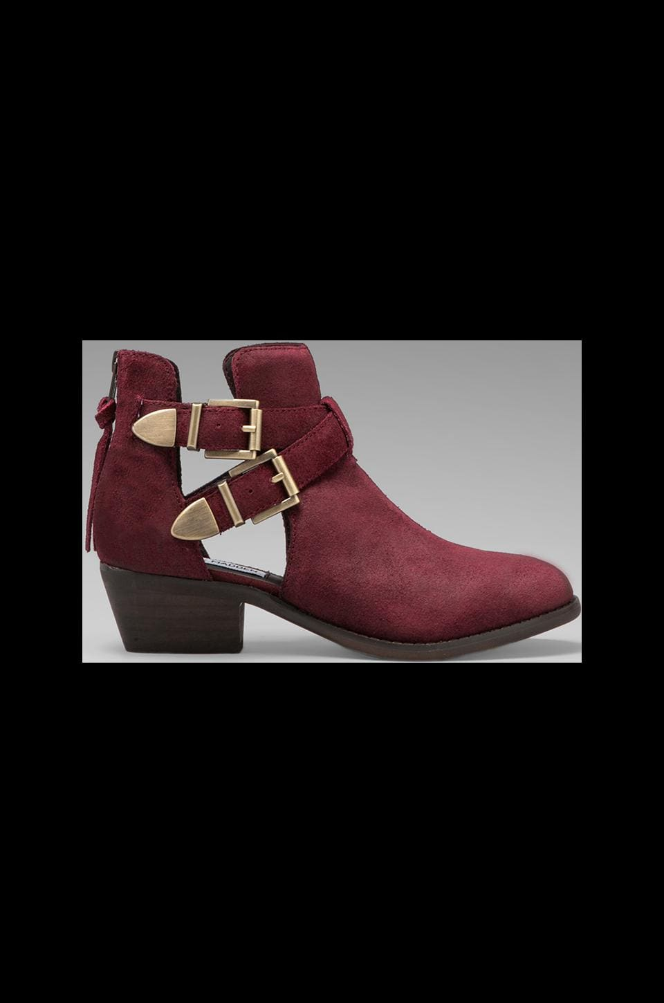Steve Madden Cinch Bootie in Burgundy Suede