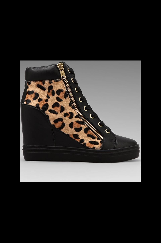 Steve Madden Zipps Sneaker in Black/Leopard