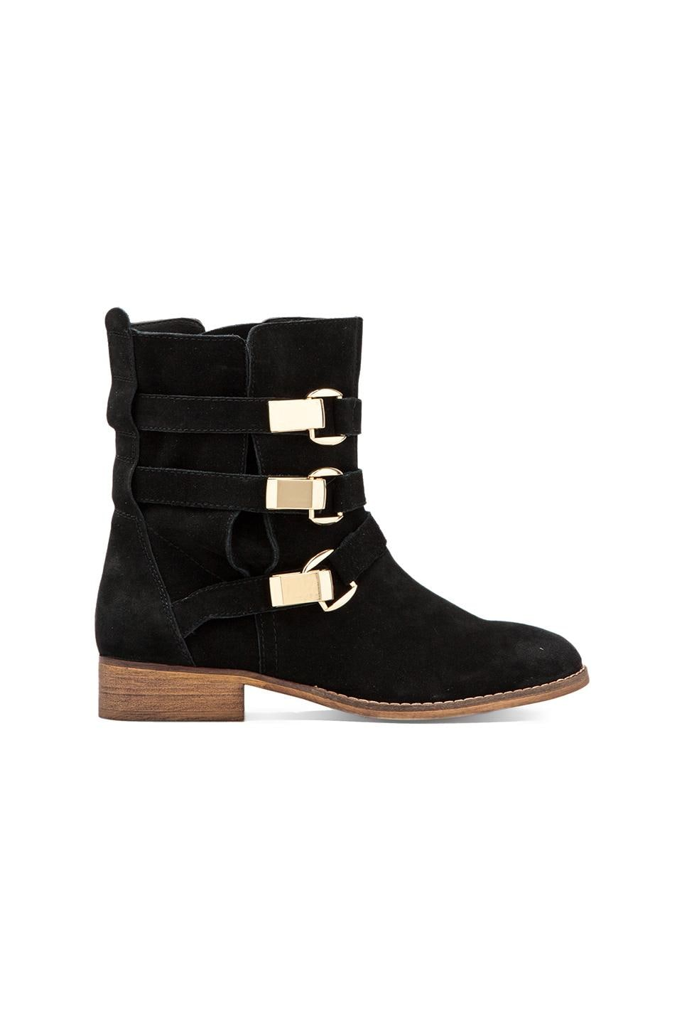 Steve Madden Haggle Boot in Black Suede