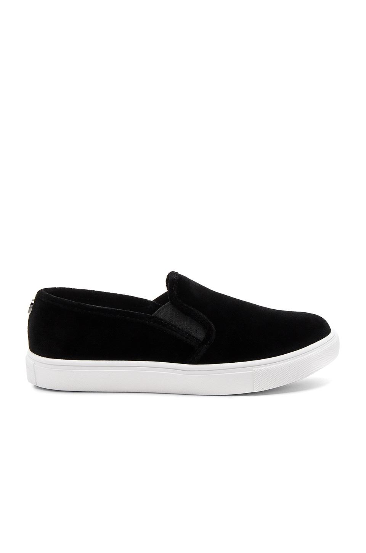 Steve Madden ECNTRCV Sneaker in Black Velvet