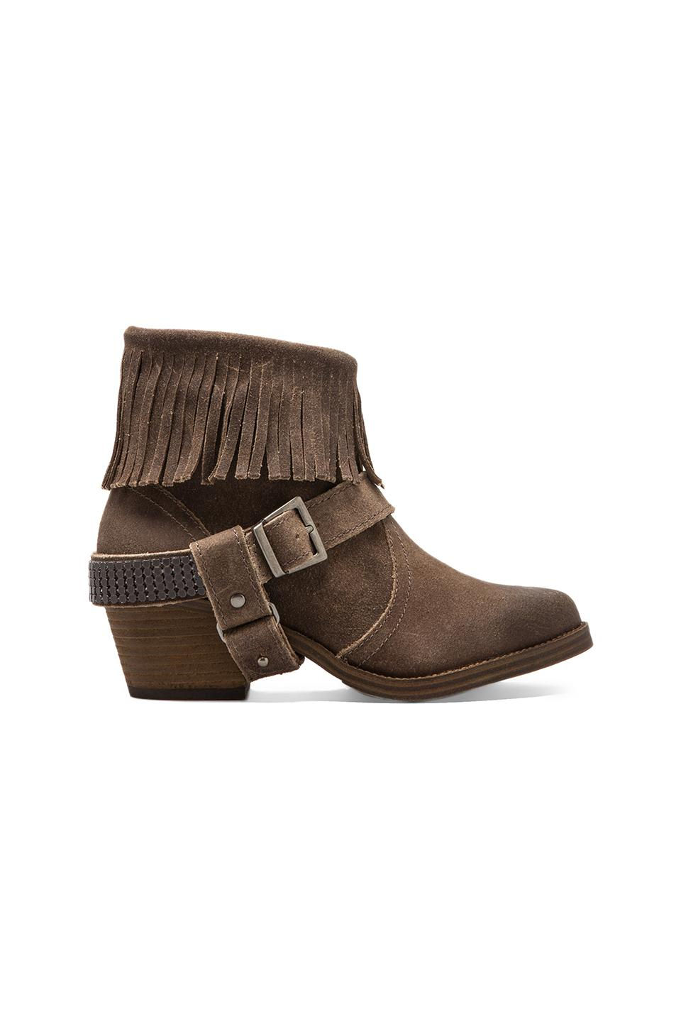 Steve Madden Cavvvo Bootie in Taupe Suede