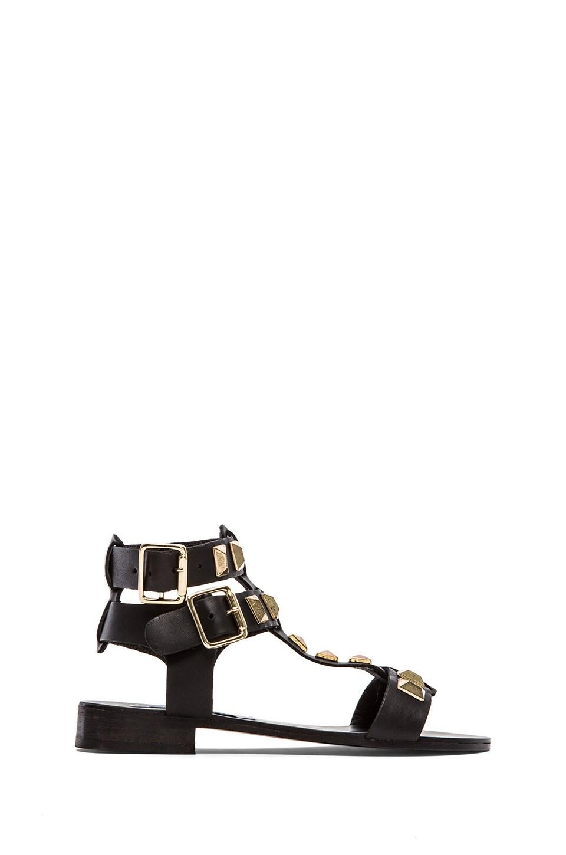 Steve Madden Perfeck Sandal in Black & Gold