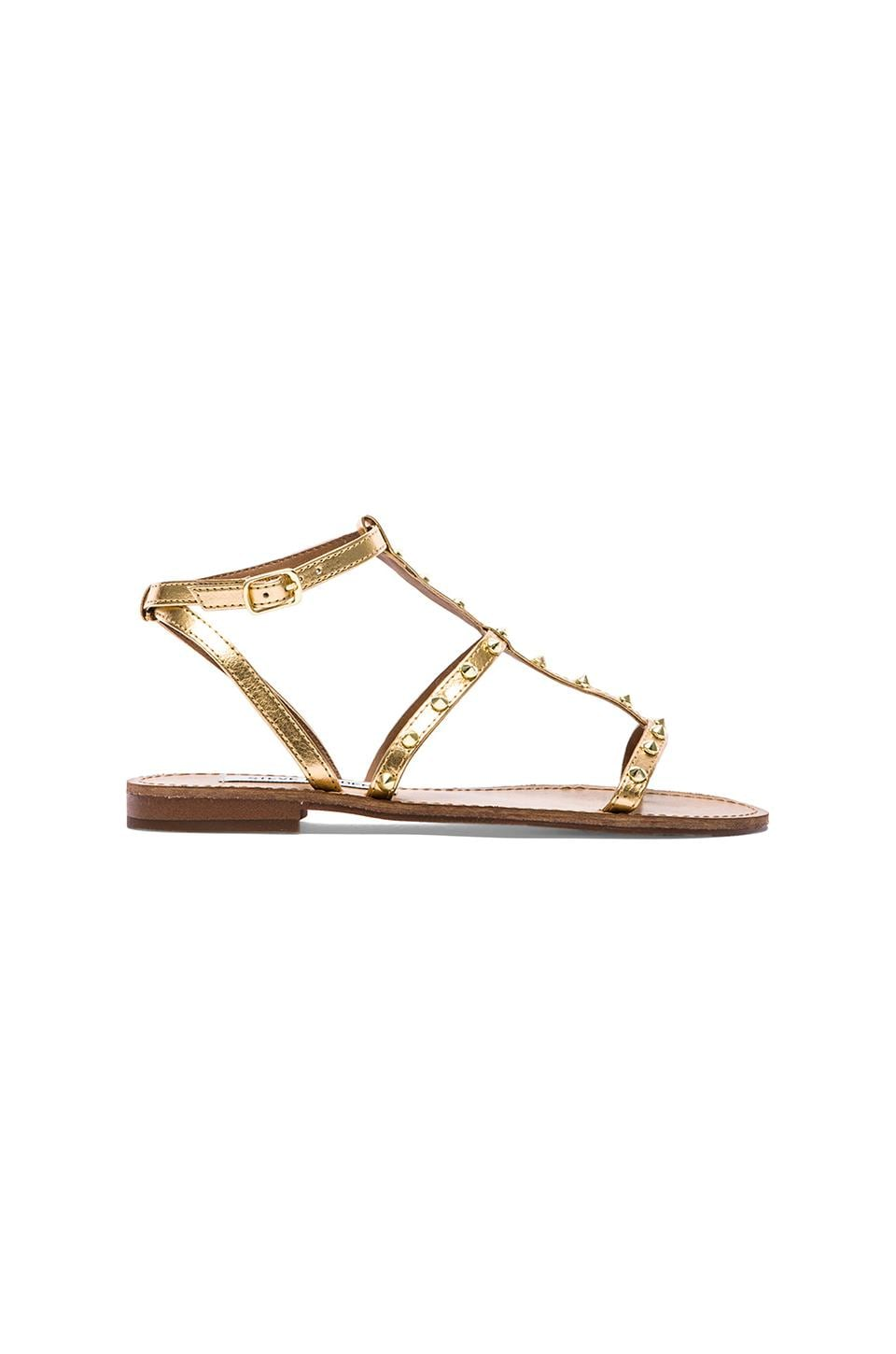 Steve Madden Greenie Sandal in Gold