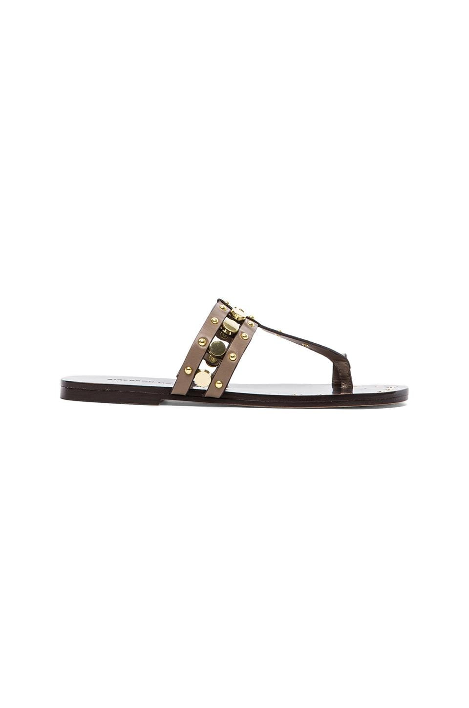 Sigerson Morrison Buffy Sandal in Taupe