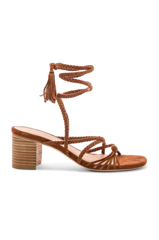 Sigerson Morrison Haize Sandal in Cognac
