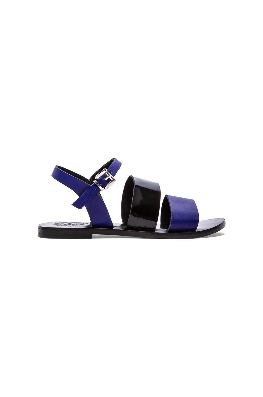 Sol Sana January II Sandal in Sapphire & Black