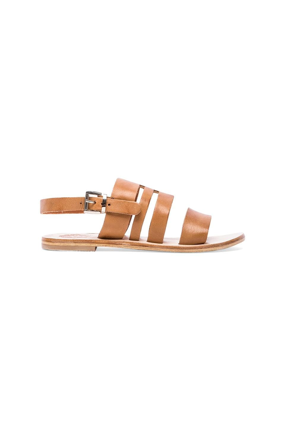Sol Sana Phenoix Sandal in Tan