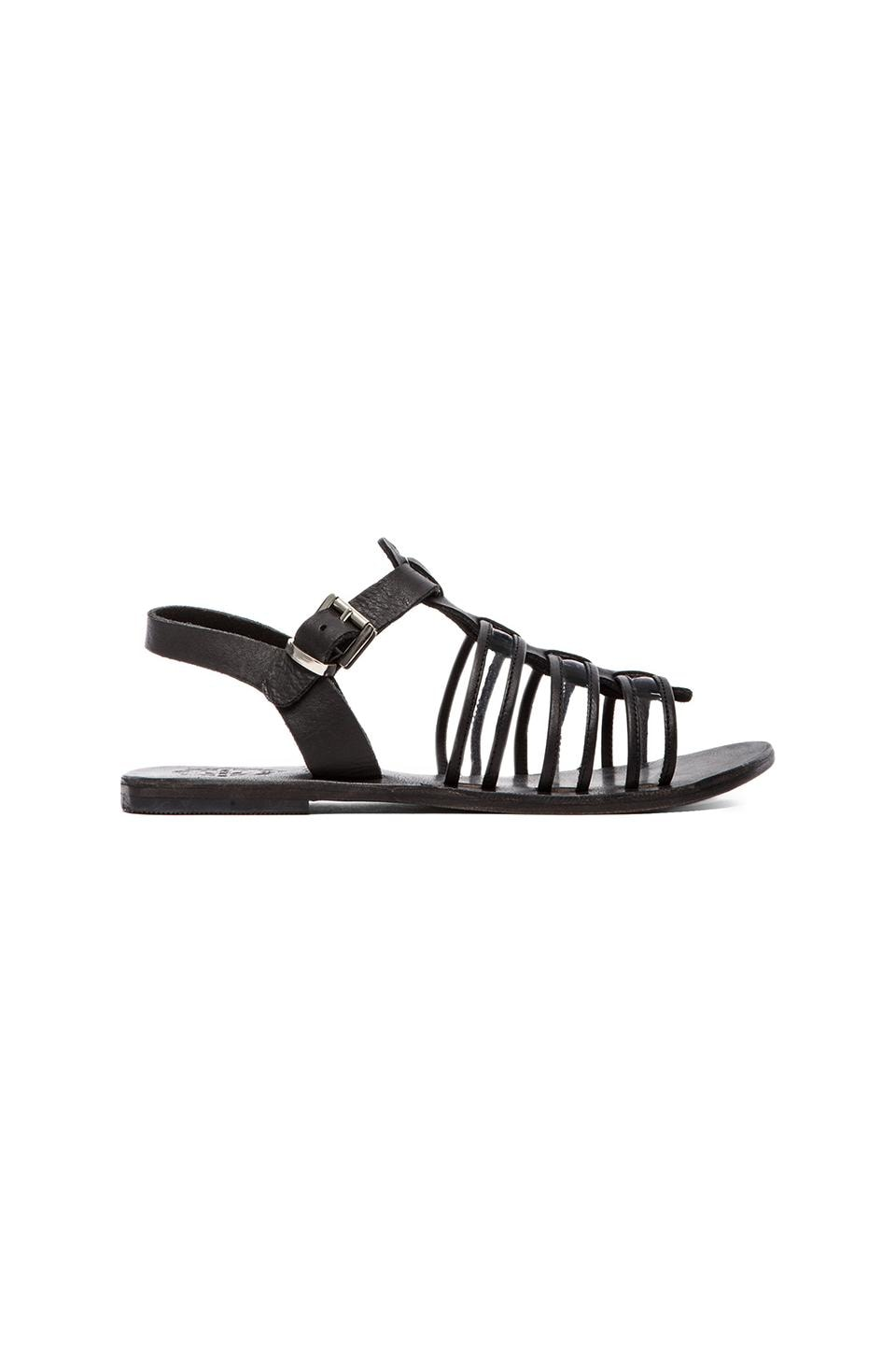 Sol Sana Dolly Sandal in Black