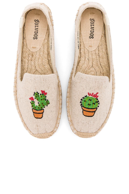 Cactus Platform by Soludos