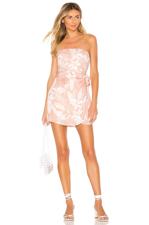 superdown Liberty Mini Dress in Pink Floral