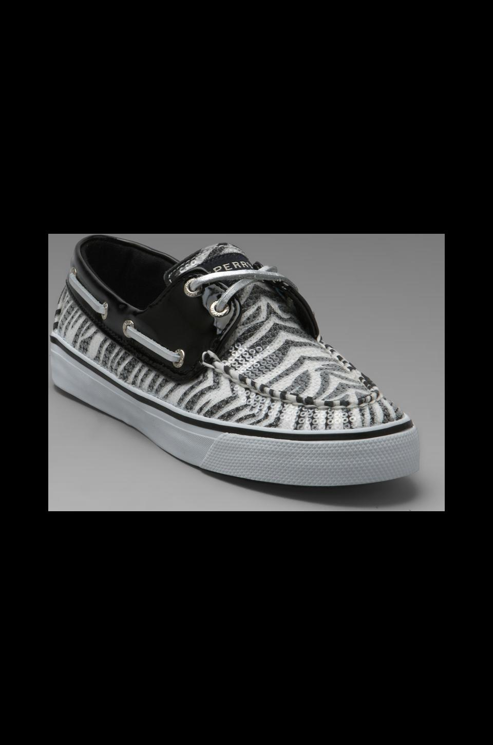 Sperry Top-Sider Bahama 2-Eye in Black/White