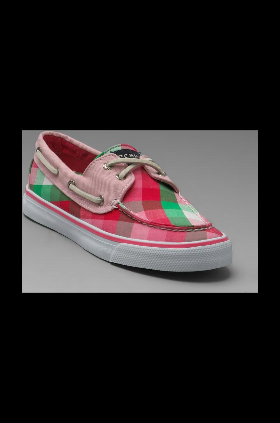 Sperry Top-Sider Bahama 2-Eye in Pink/Green