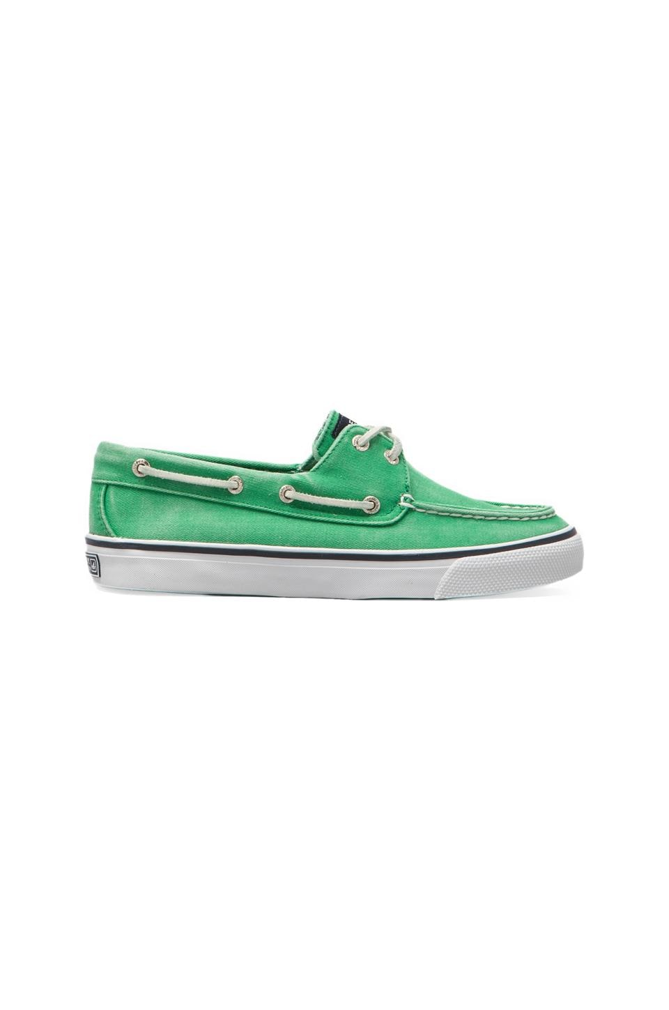 Sperry Top-Sider Bahama 2-Eye in Green Canvas