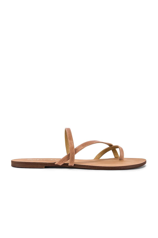 Splendid Trenton Sandal in Nude