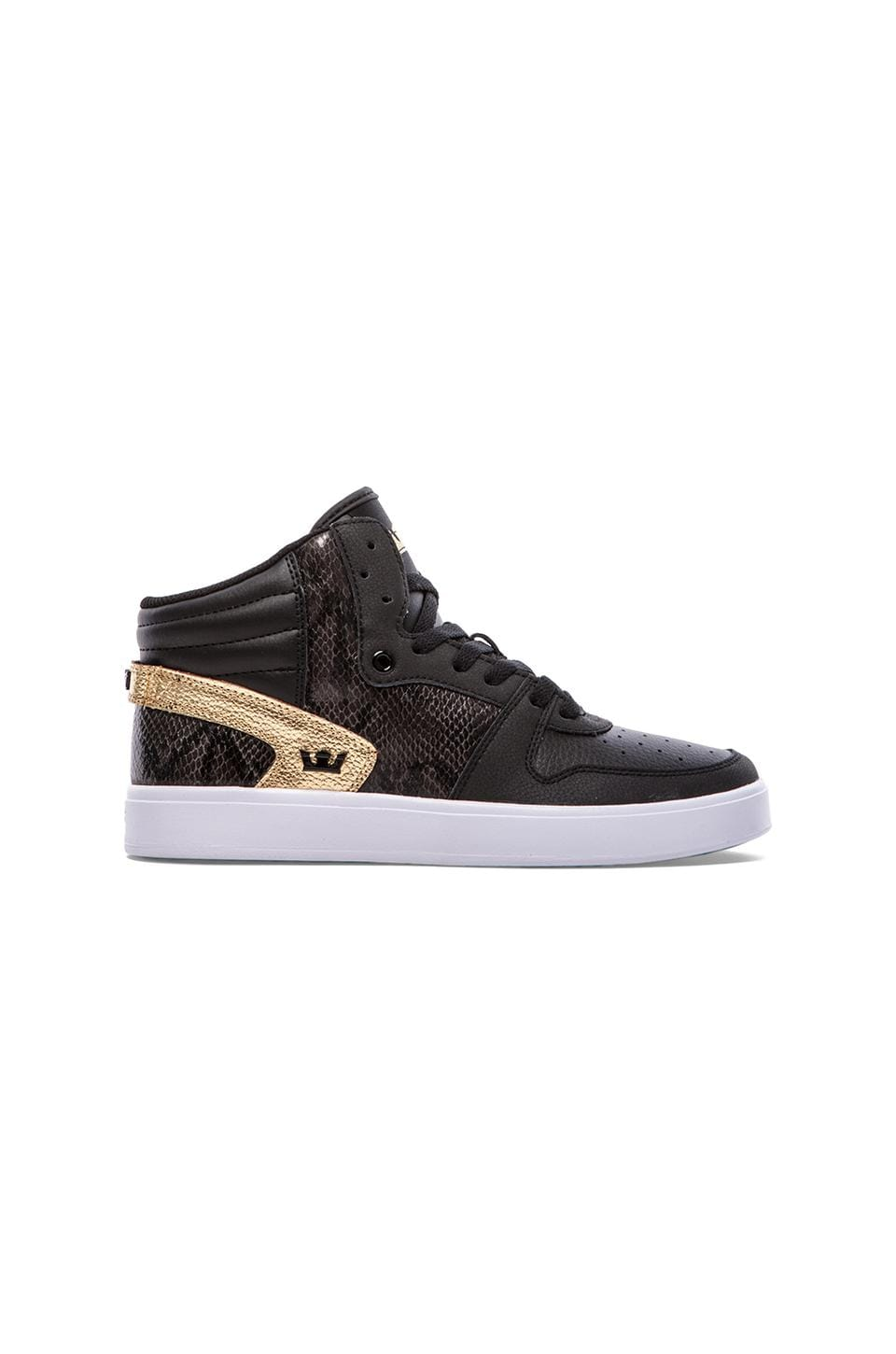 Supra Sphinx in Black/Gold